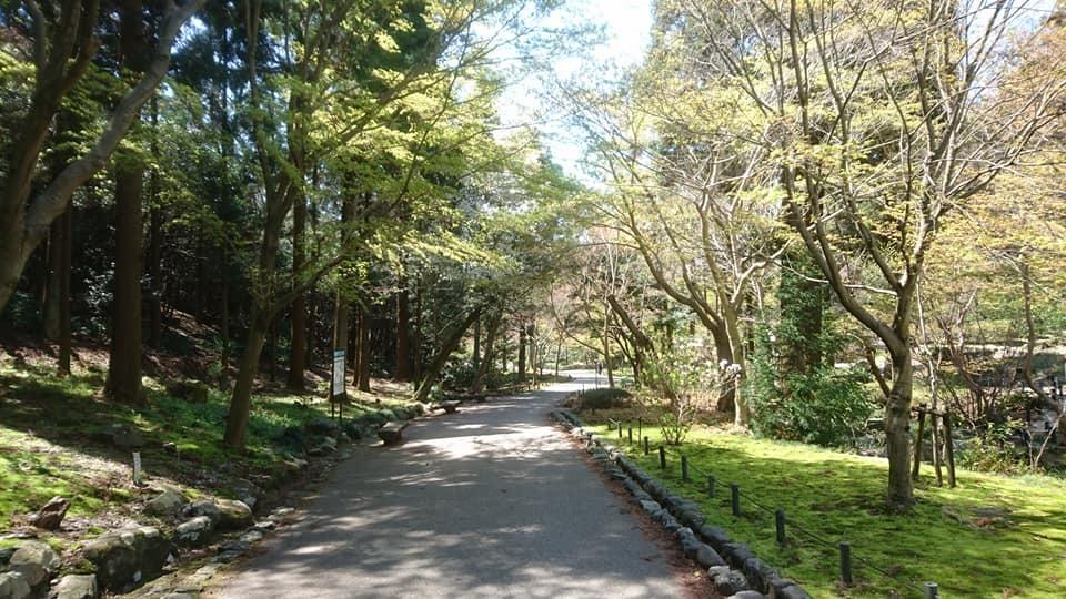 東山動植物園へ行ってきました~也有園編~_f0373339_16022577.jpg