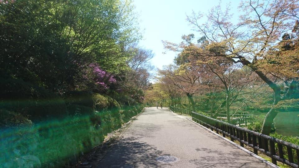 東山動植物園へ行ってきました~也有園編~_f0373339_16140615.jpg