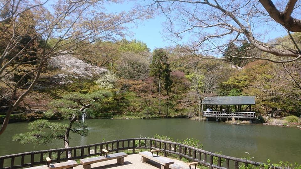 東山動植物園へ行ってきました~也有園編~_f0373339_16143483.jpg