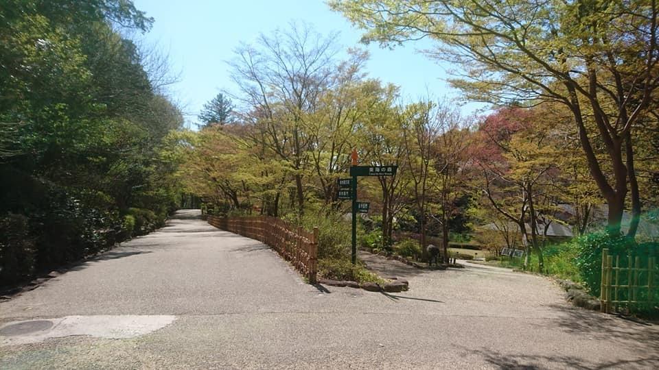 東山動植物園へ行ってきました~也有園編~_f0373339_16143533.jpg
