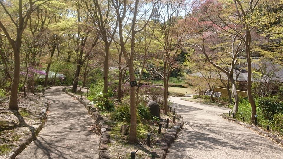 東山動植物園へ行ってきました~也有園編~_f0373339_16153472.jpg