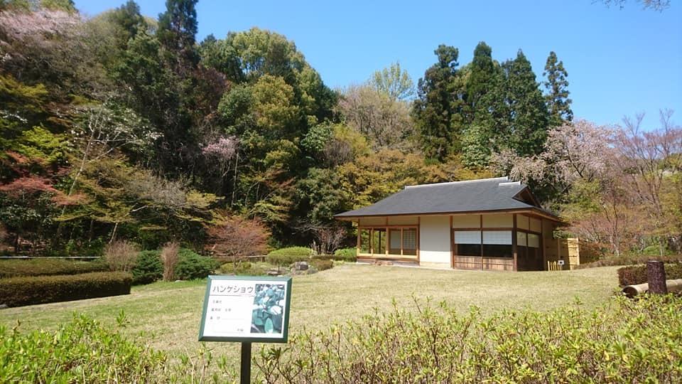 東山動植物園へ行ってきました~也有園編~_f0373339_16164795.jpg
