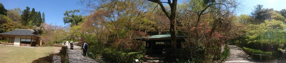 東山動植物園へ行ってきました~也有園編~_f0373339_16203567.jpg
