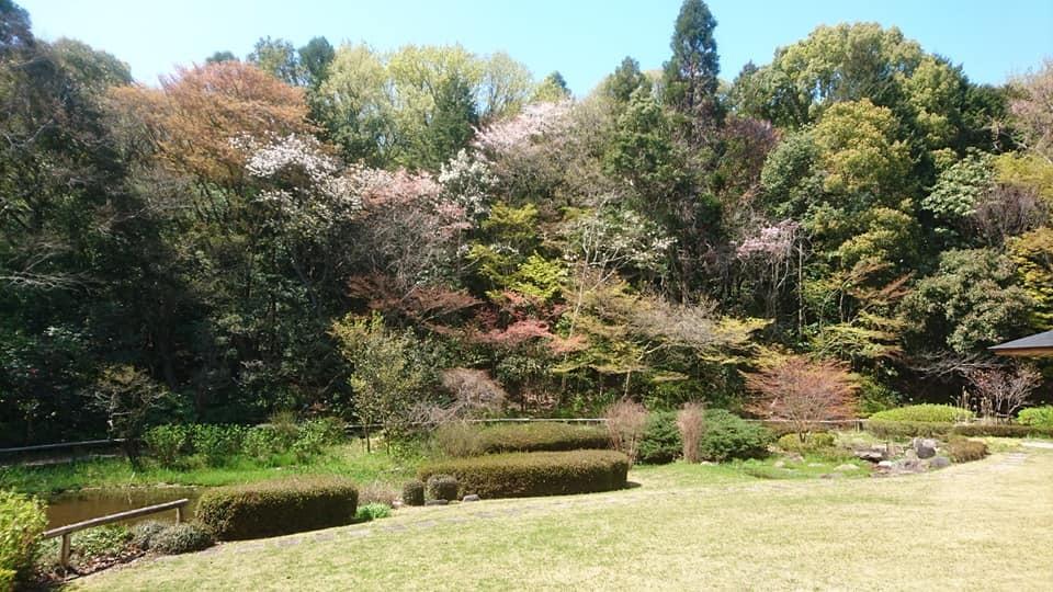 東山動植物園へ行ってきました~也有園編~_f0373339_16203581.jpg