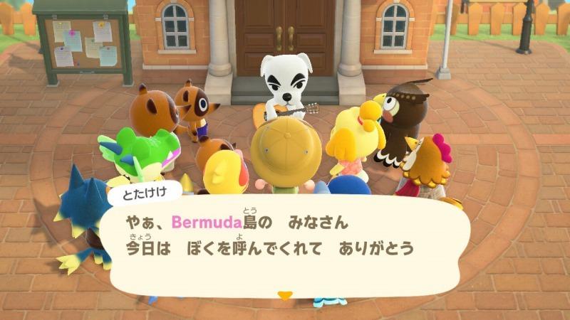 ゲーム「あつまれどうぶつの森 島クリエイターアプリゲット!!」_b0362459_12472590.jpg