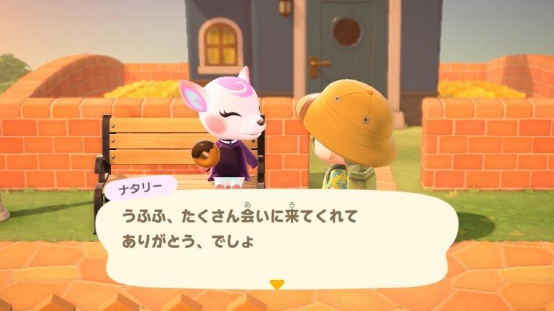 ゲーム「あつまれどうぶつの森 島クリエイターアプリゲット!!」_b0362459_13102581.jpg