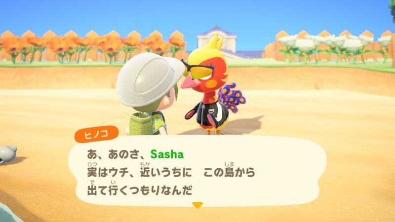 ゲーム「あつまれどうぶつの森 島クリエイターアプリゲット!!」_b0362459_13122833.jpg