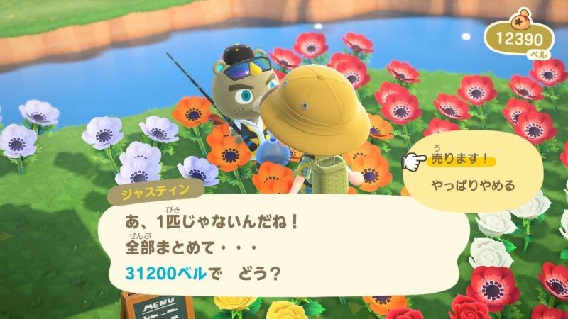 ゲーム「あつまれどうぶつの森 島クリエイターアプリゲット!!」_b0362459_13164072.jpg