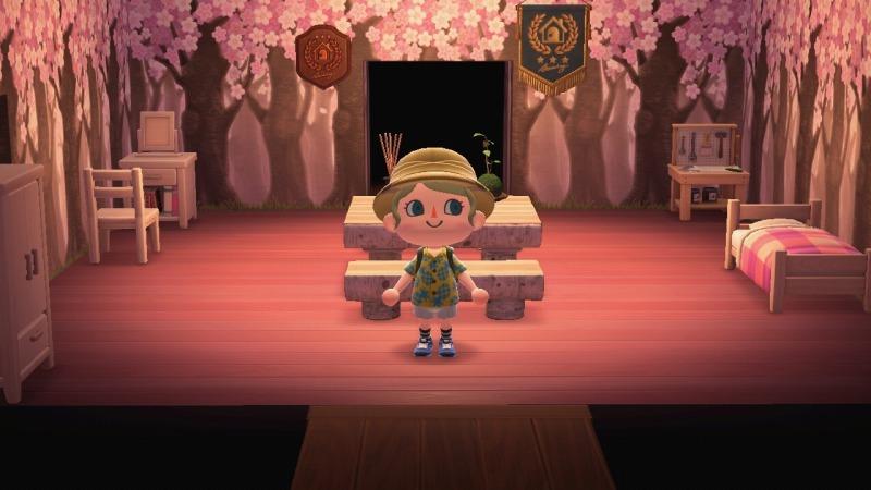 ゲーム「あつまれどうぶつの森 島クリエイターアプリゲット!!」_b0362459_13183227.jpg