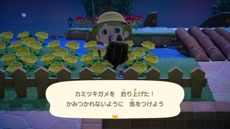 ゲーム「あつまれどうぶつの森 ちとせキタァァァァ!!!!!」_b0362459_23233370.jpg