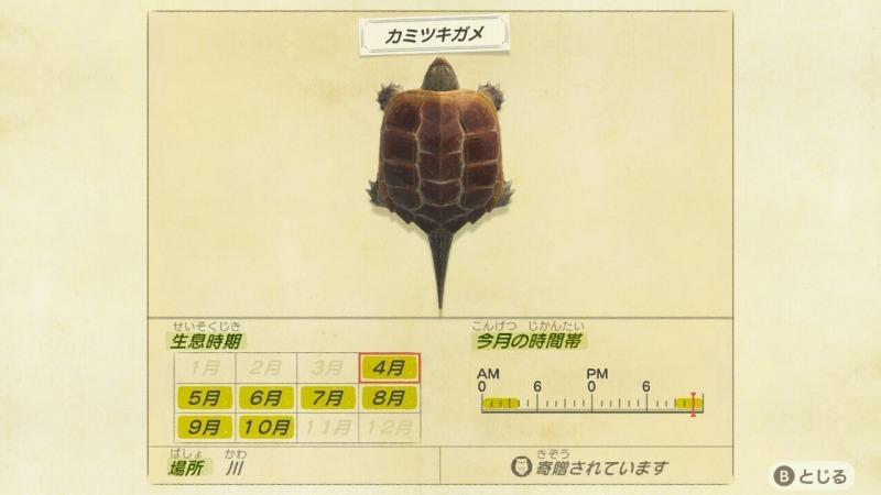 ゲーム「あつまれどうぶつの森 ちとせキタァァァァ!!!!!」_b0362459_23250481.jpg