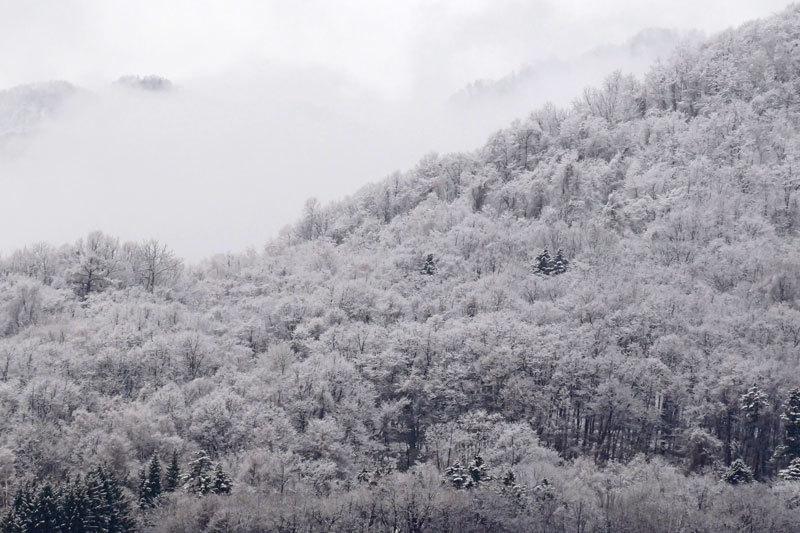 4月の雪_d0162994_08563335.jpg