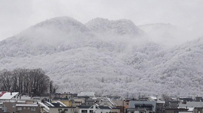 4月の雪_d0162994_08564484.jpg