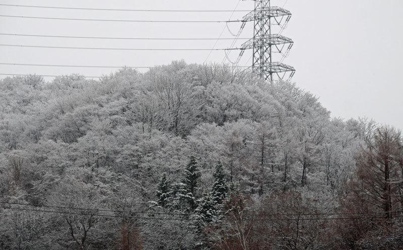 4月の雪_d0162994_08571673.jpg