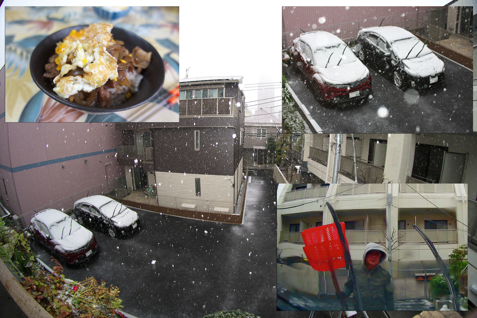 雪のコロナ休み_a0271402_08161089.jpg