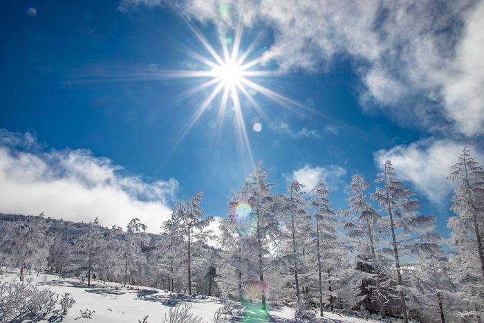雲に浮かぶ北アルプス 根子岳_b0244811_09323731.jpg