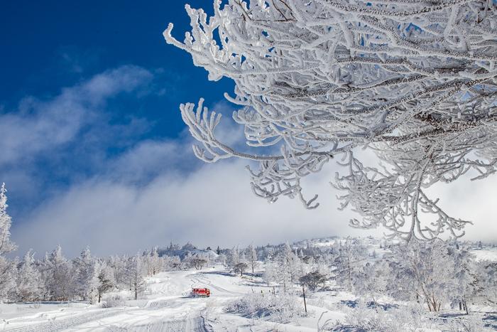 雲に浮かぶ北アルプス 根子岳_b0244811_09365712.jpg