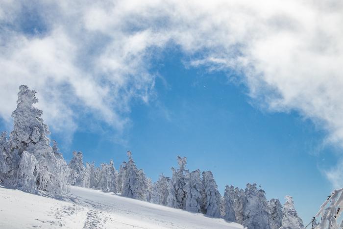 雲に浮かぶ北アルプス 根子岳_b0244811_09440063.jpg