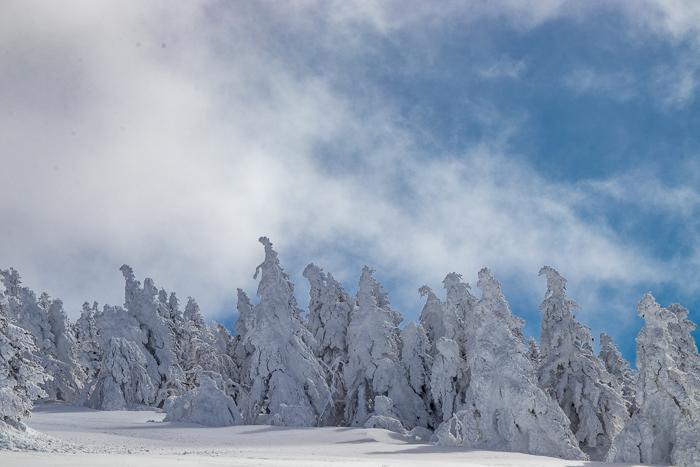 雲に浮かぶ北アルプス 根子岳_b0244811_09513632.jpg