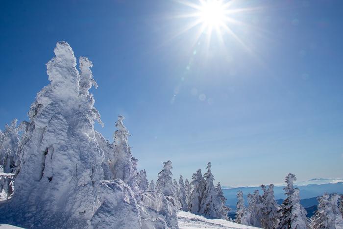 雲に浮かぶ北アルプス 根子岳_b0244811_10160369.jpg