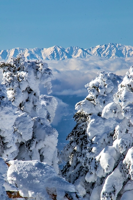 雲に浮かぶ北アルプス 根子岳_b0244811_10181053.jpg