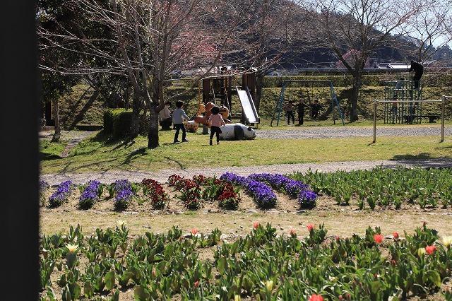 野原公園散策(その1)(撮影:3月20日)_e0321325_19311296.jpg
