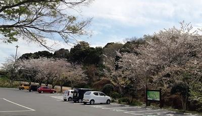 志摩 横山へ登りました。_f0129726_18351021.jpg