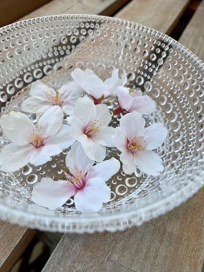 春キャベツの梅昆布和え_c0103827_17380308.jpg