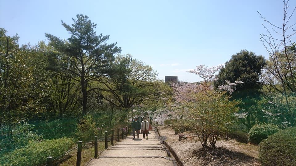 東山動植物園へ行ってきました!~桜の回廊編~_f0373339_16114797.jpg