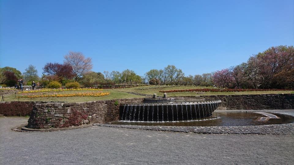 東山動植物園へ行ってきました!~桜の回廊編~_f0373339_16231208.jpg