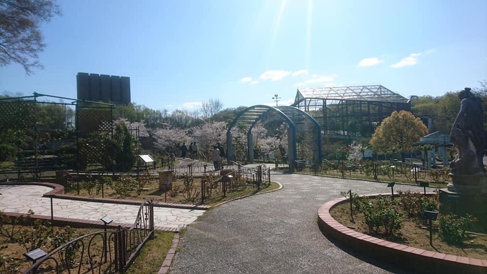 東山動植物園へ行ってきました!~桜の回廊編~_f0373339_16300210.jpg