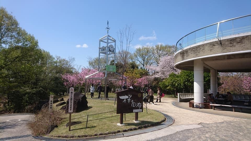 東山動植物園へ行ってきました!~桜の回廊編~_f0373339_16392831.jpg