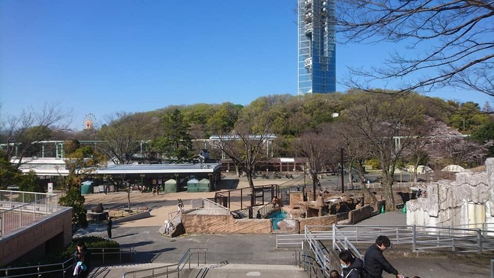 東山動植物園へ行ってきました!~桜の回廊編~_f0373339_16473441.jpg