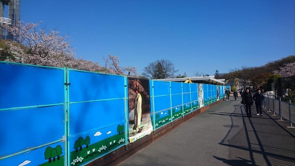 東山動植物園へ行ってきました!~桜の回廊編~_f0373339_16480605.jpg