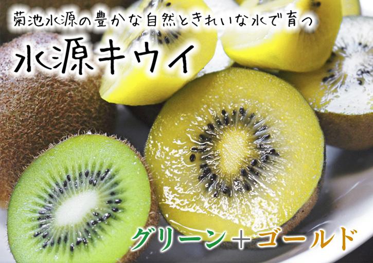 キウイの芽吹き(2020) 今年も完全無農薬、無化学肥料で育てます!_a0254656_16572878.jpg