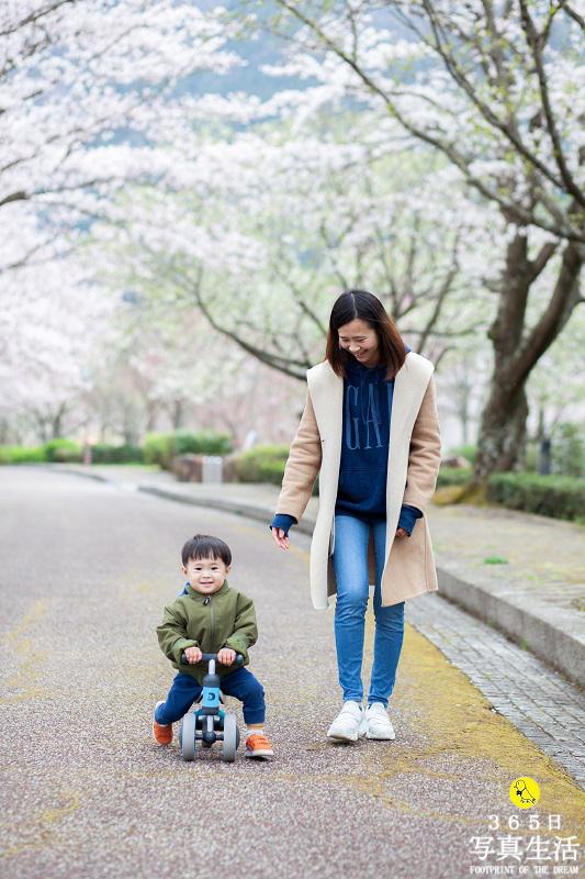 桜ロケーションフォト 2020_f0358558_16090347.jpg