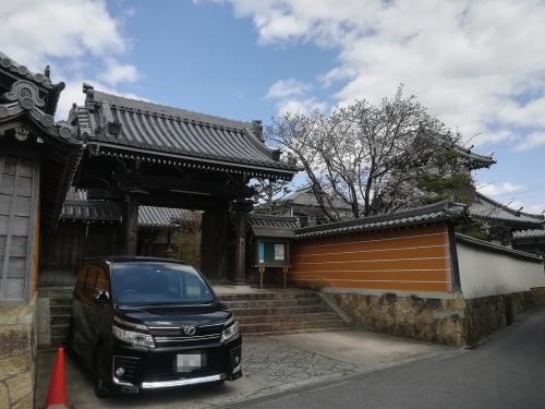 文書整理と桜見_a0111166_09000107.jpg