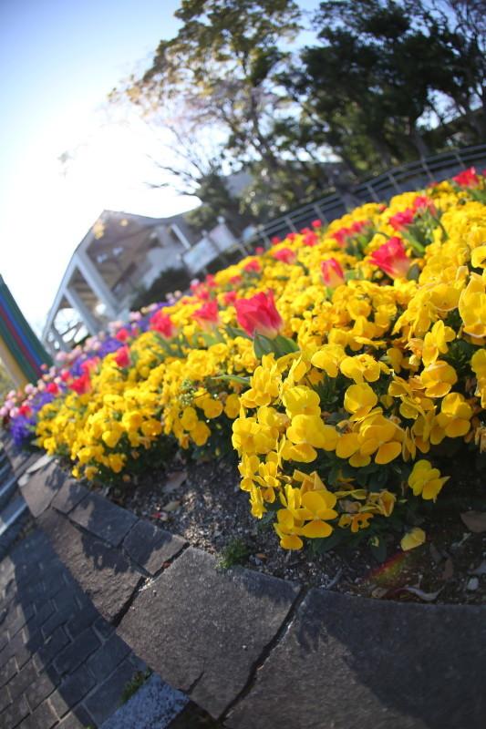庄内緑地公園_f0367980_18122610.jpg