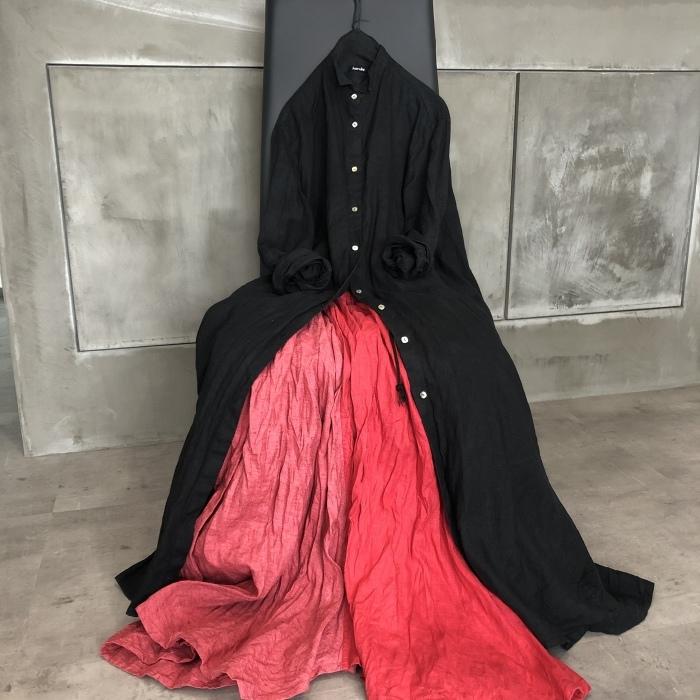 赤のスカート_a0152283_08485738.jpeg