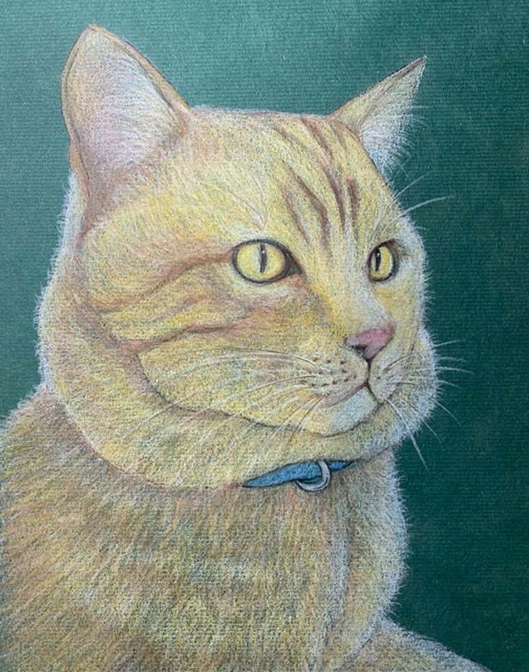 猫を描く_f0043592_09241152.jpg