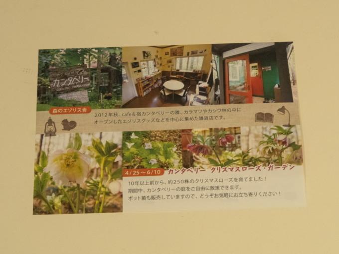 新年度、新しい「とほ宿vol.31」発売中!パンフもリニューアル!_f0276498_14200807.jpg