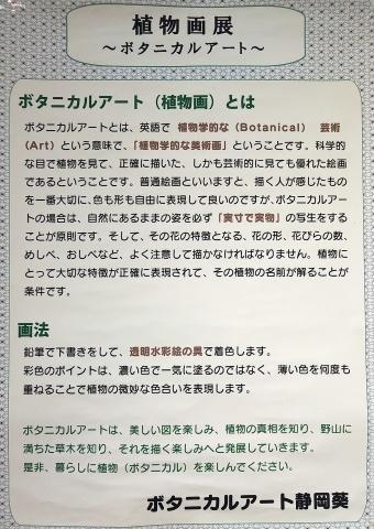 第20回「ボタニカルアート静岡葵」作品展_b0028299_20505156.jpg