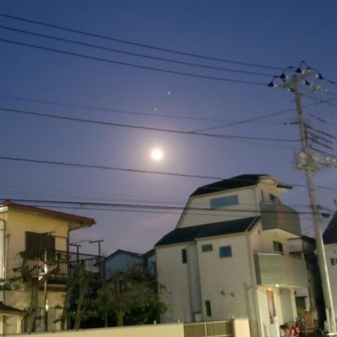 春の月と太陽_a0101801_06352318.jpg