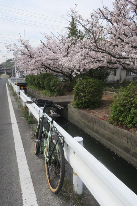 こんな時は1人自転車_c0132901_20505272.jpg