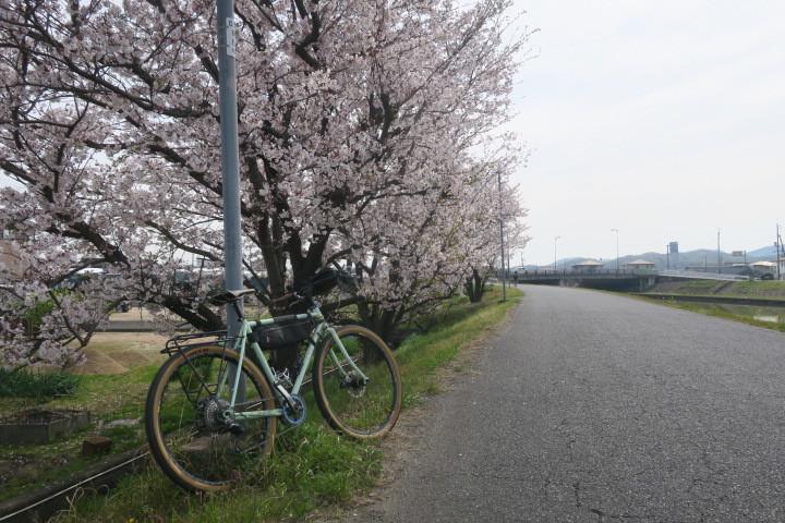 こんな時は1人自転車_c0132901_21034324.jpg