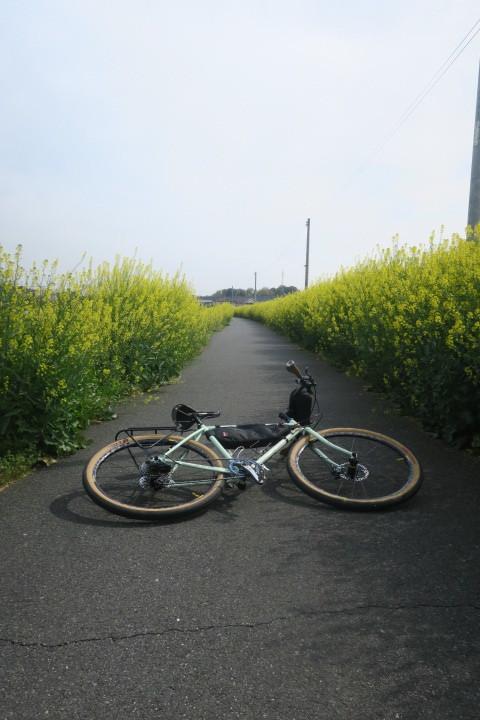 こんな時は1人自転車_c0132901_21045887.jpg