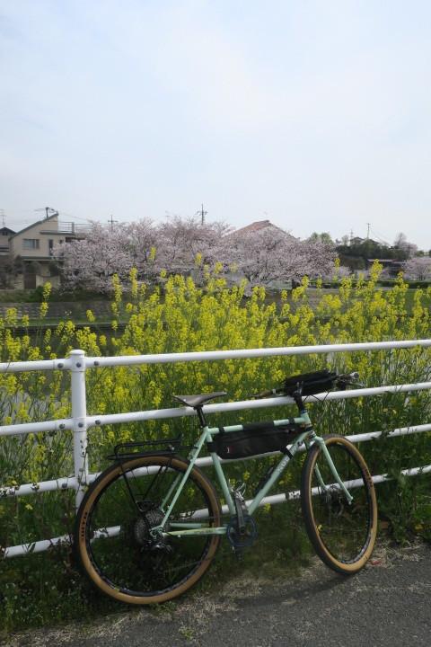 こんな時は1人自転車_c0132901_21054287.jpg