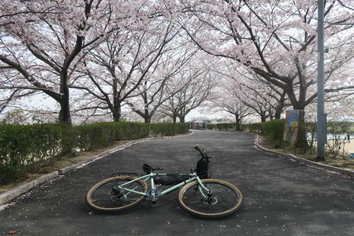 こんな時は1人自転車_c0132901_21242558.jpg