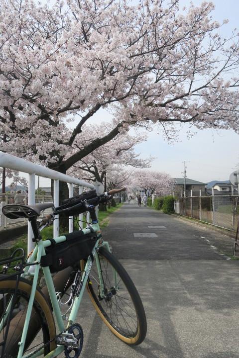 こんな時は1人自転車_c0132901_21245456.jpg