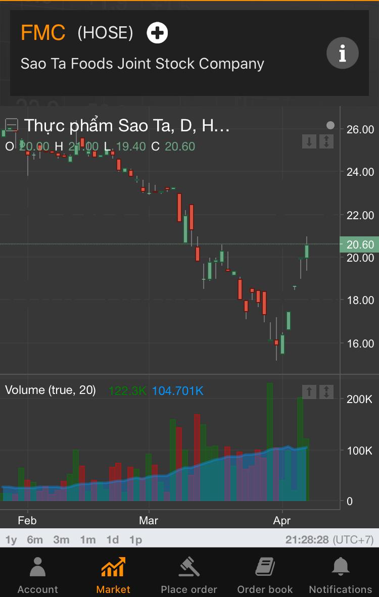 ベトナム株 底入れから反騰へ_c0073205_23371238.jpeg